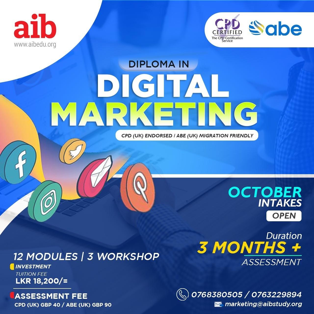 Professional Diploma in Digital Marketing