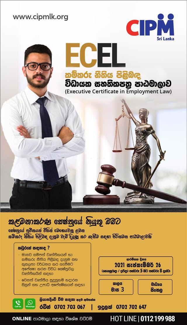 Executive Certificate in Employment Law